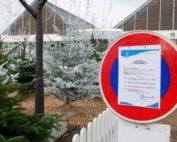 La Turballe : un arrêté municipal pour imposer la neige pour les illuminations de Noël